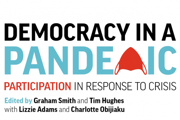Democracy in a Pandemic: Participation in response to crisis